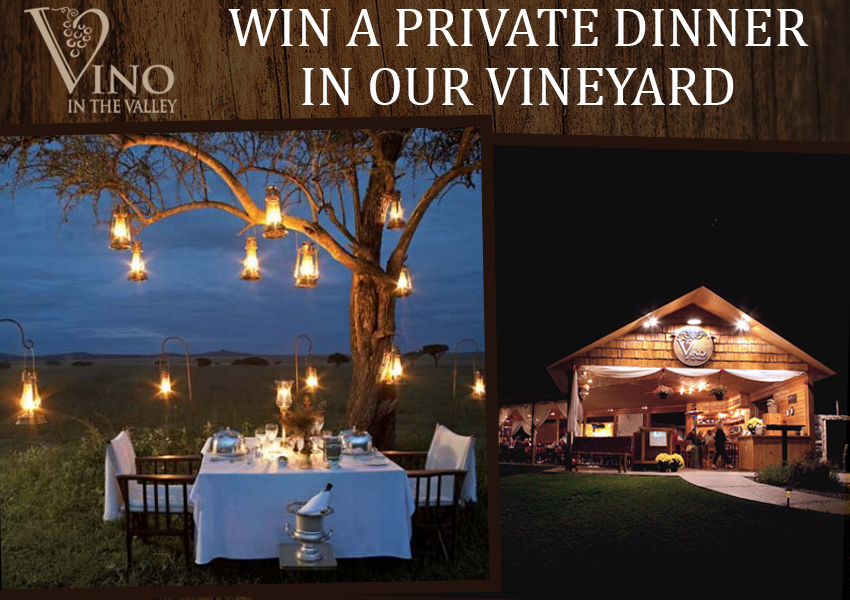 Vino in the Valley - Win a Private Dinner in our Vineyard